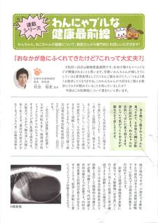 わんにゃブル会報vol4(院長)_ページ_1.jpg