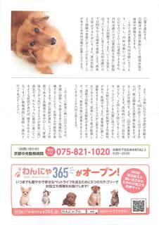 わんにゃブル会報vol4(院長)_ページ_2.jpg