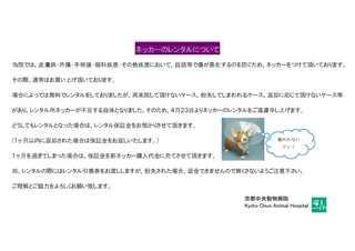 アニマルネッカーのレンタルについて(文章).jpg