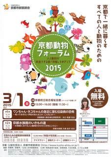 京都動物フォーラム2015flyer.jpg