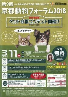 京都動物フォーラム2018 .jpg
