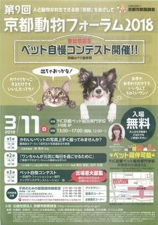 京都動物フォーラムpdf.jpg