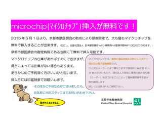 microchip.docx 2.jpg