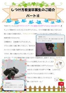 アダルトクラス新聞�Cカボチャ.jpg