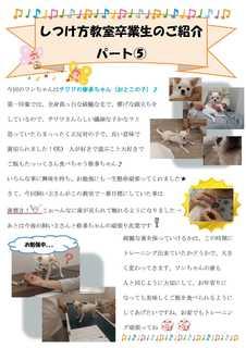 パピークラス新聞�D修多.jpg