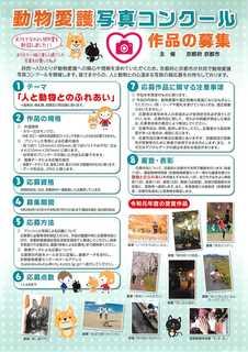 動物愛護写真コンクール_1.jpg