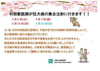 村田獣医師が狂犬病の集合注射に行きます2017.jpg