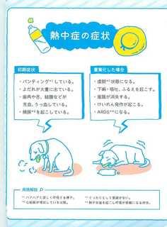 熱中症予防対策マニュアル_4.jpg