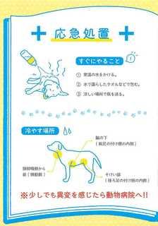 熱中症予防対策マニュアル_6.jpg