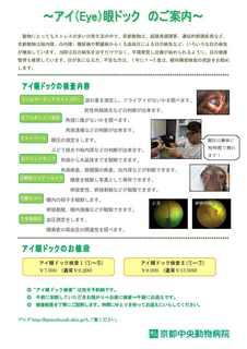 眼科精密検査のお知らせ〜 配布用 15.10.6〜.jpg
